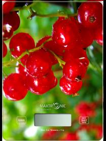 MAXTRONIC MAX-1031-4