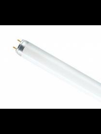(024865) Лампа OSRAM L18W/640 25 G13 (Смоленск)