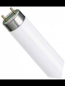 (004663) Лампа PHILIPS TLD 36W/950