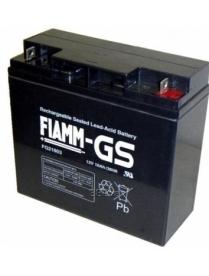 FIAMM FG21803