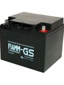 FIAMM FG24204