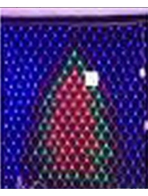 (57100) 164-550 Сетка светодиодная внутр. Ёлочка бегущие огни 1,2*1,6м