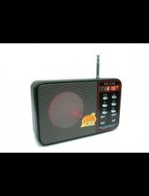 WS-3166 (TF,USB, 3W,FM,аккум BL-5C)