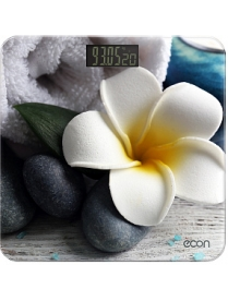 Econ ECO-BS004