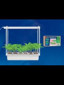 ULT-P34-10W/SPLE IP40 WHITE 12 Набор «Минисад», светильник для растений светодиодный с подставкой. С