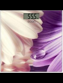 Econ ECO-BS009