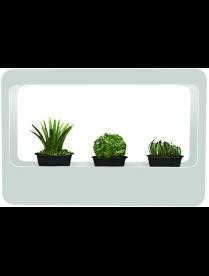 "Gauss LED ""Фито-сад"" для растений с адаптером 14W, 850Лм, 4000К (480*320*138мм) Basic"