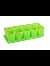 (095288) АС45838 Набор стаканчиков для рассады с поддоном Flora 364х169х94,3мм (салатный) АС 458380