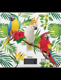 Econ ECO-BS112K